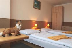 Penzion FOX se sídlem v klidné části Prahy 9 vám poskytne útočiště na pár nocí